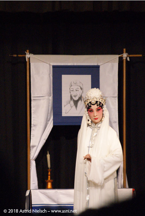 Chinese Opera performance at ANZAC hall in Featherston