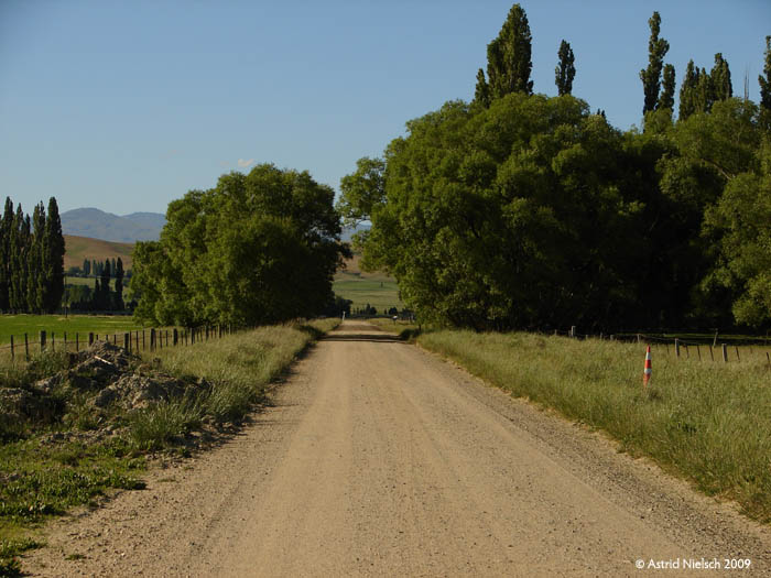 photo: Central Otago road