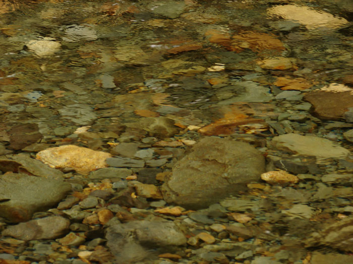 photo: gold panning river