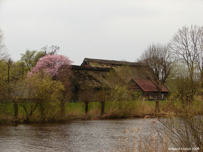 photo: Bremen: Farm house, Blockland