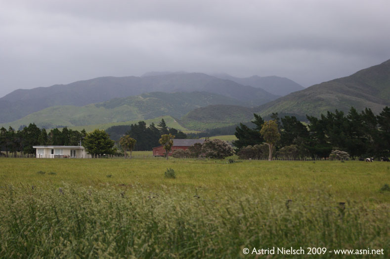 photo: Wairarapa landscape
