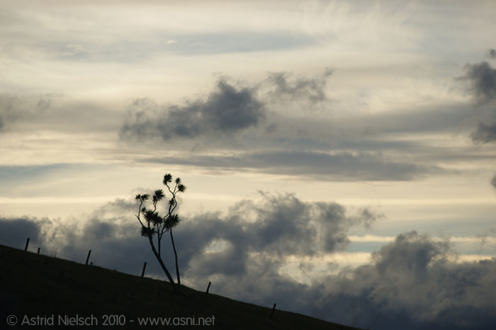 photo: Late-late summer in the Wairarapa