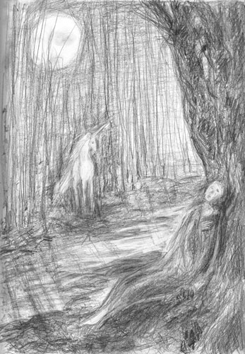 sketch: lost in the forest
