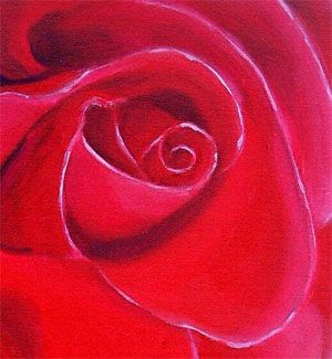 Red Rose by Tania Williams
