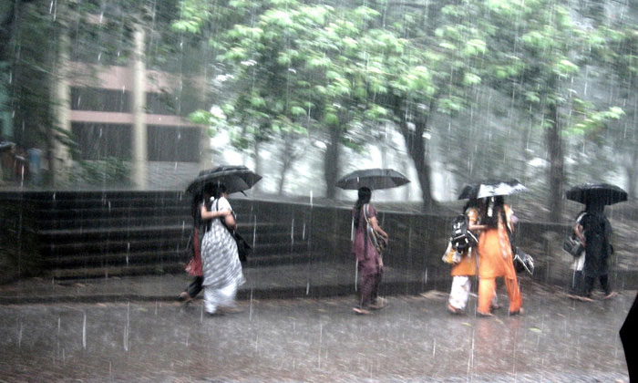 A Walk in the Rain by Anupamas