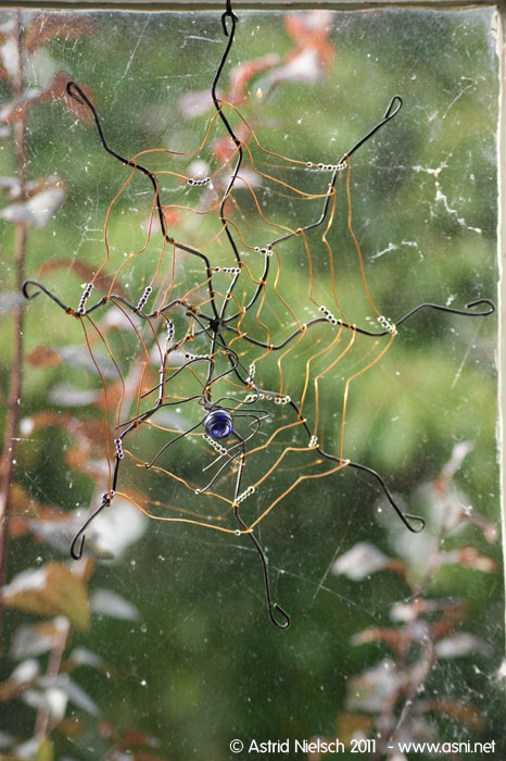 spider among the cobwebs