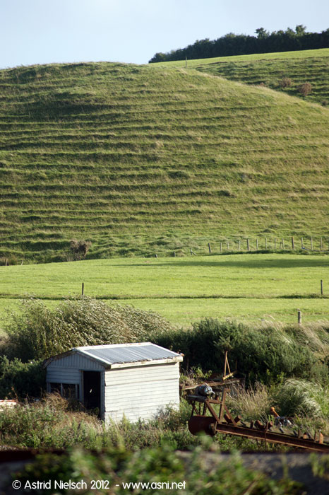 Taranaki backroads * dwellings, old and new