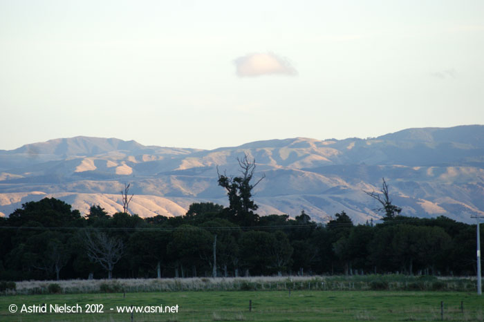 Wairarapa evening mood