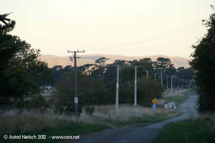 Evening mood outside Featherston