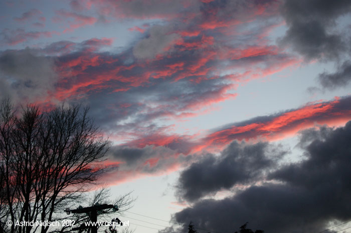 Featherston clouds