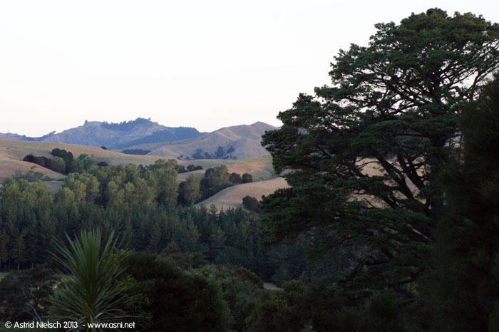 Wairarapa hill country: view from Rewanui
