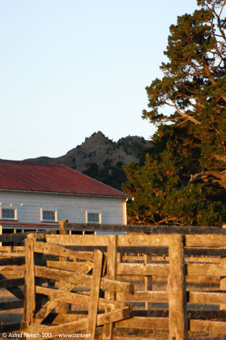 Wairarapa habitations old and new, Rewanui