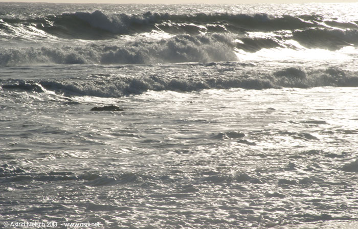 Waves off the Wairarapa coast, toward Cape Palliser