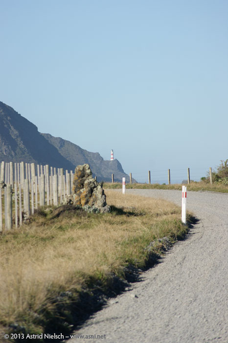 Afternoon at Cape Palliser