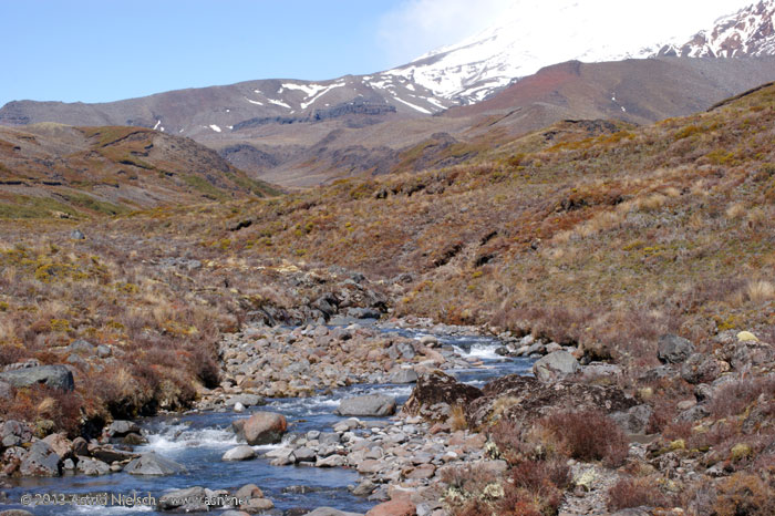 Walk on the wild side: Hiking in Tongariro National Park