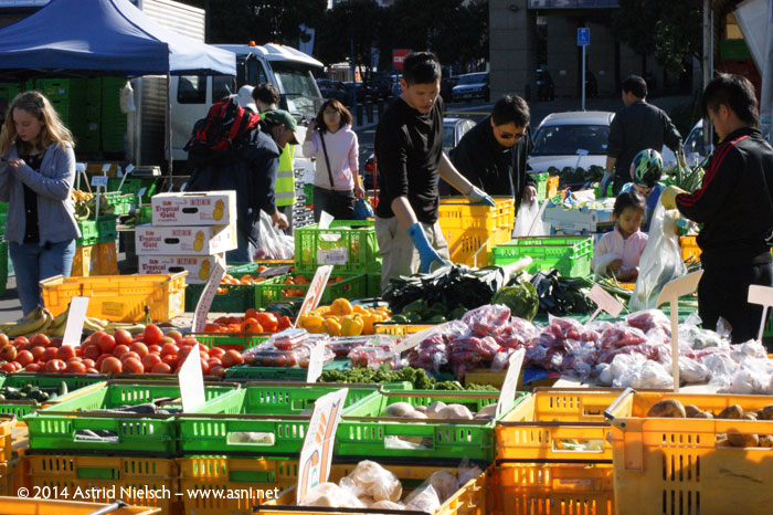 Wellington on a good day: Chaffer's market
