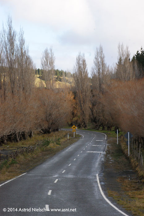 Early spring on the road, Wairarapa