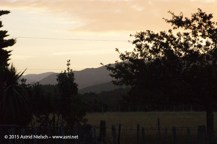 Late summer evening on Eastern Lake Road, Featherston, Wairarapa