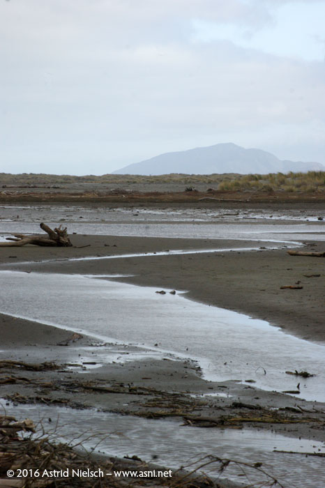 Stopover at Kuku Beach, Kapiti Coast