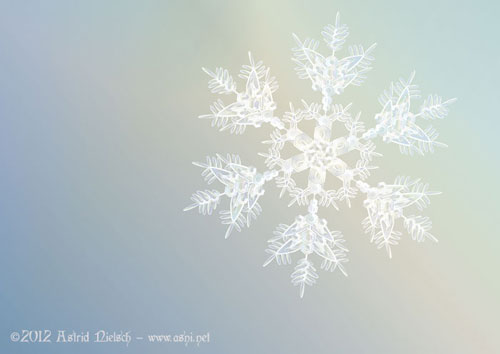 snowflake christmas card design by Astrid Nielsch